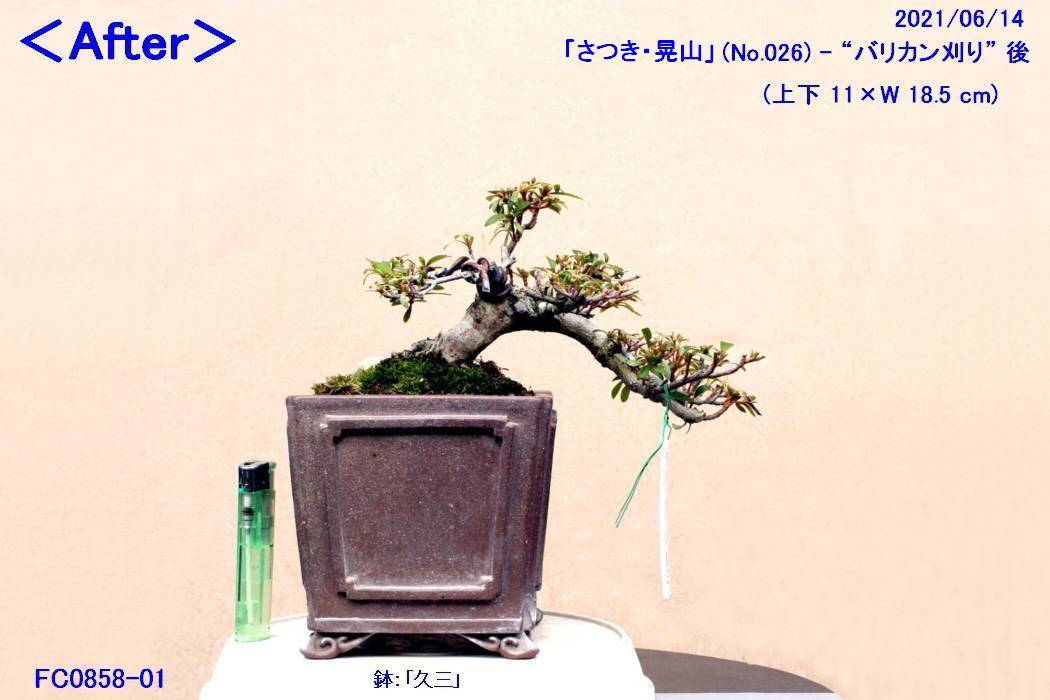 FC0858-01.jpg
