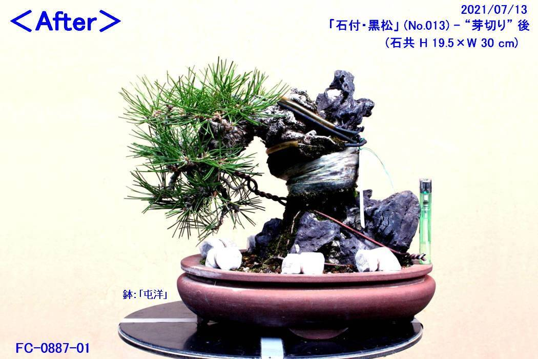 FC0902-03.jpg
