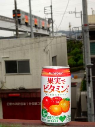 果実ビタミン (2)