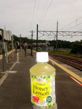 山田養蜂場 (3)