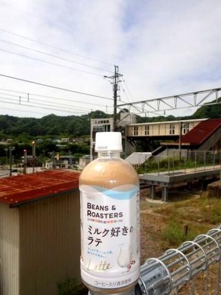 ミルク好きのラテ (1)