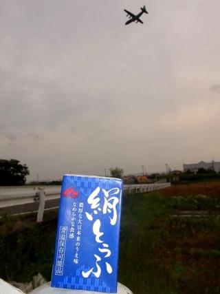 ノーマル絹豆腐 (2)