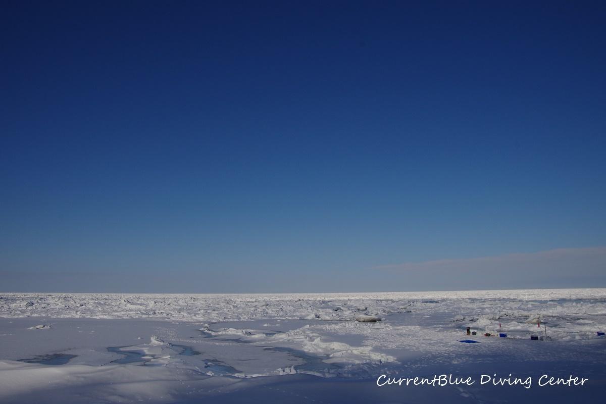 カレントブルー流氷ダイビングツアー (2)