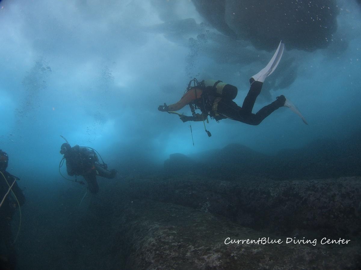 カレントブルー流氷ダイビングツアー (4)