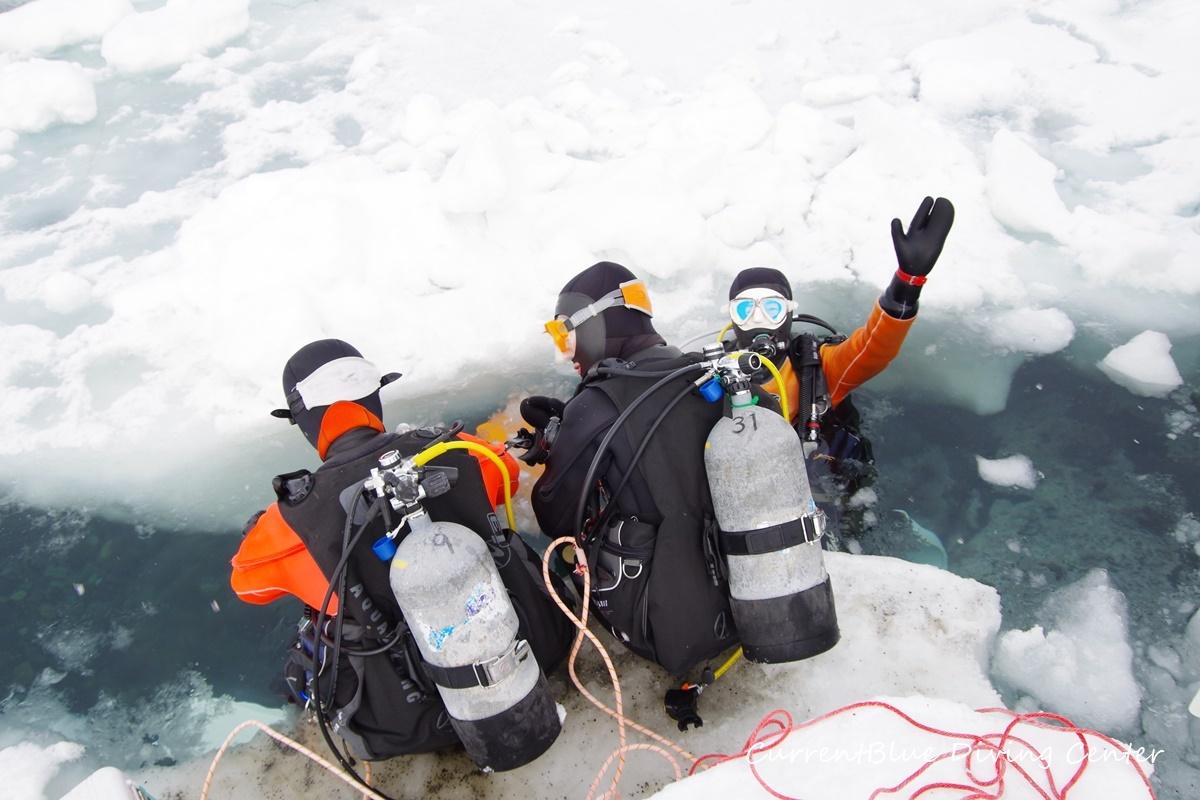 カレントブルー流氷ダイビングツアー (5)