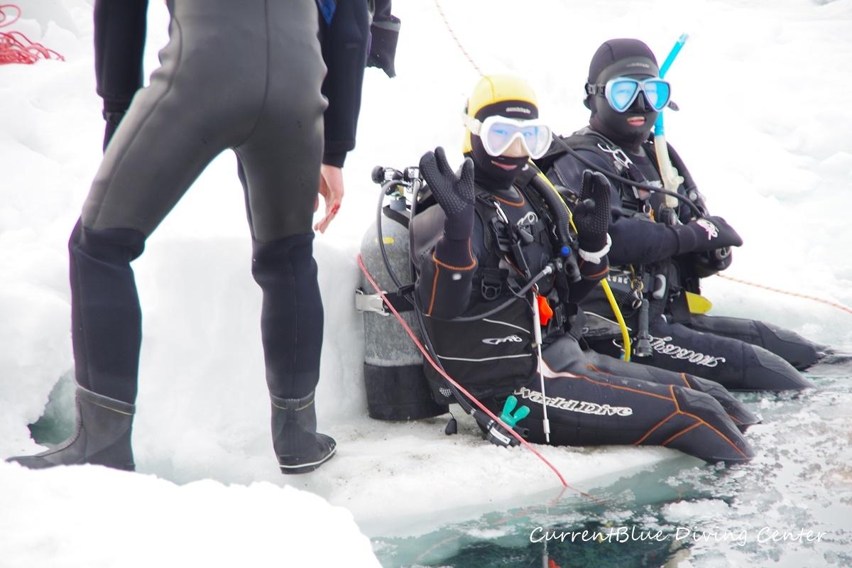 カレントブルー流氷ダイビングツアー (6)