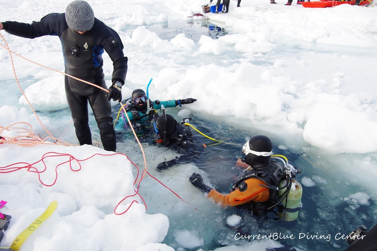 カレントブルー流氷ダイビングツアー (7)