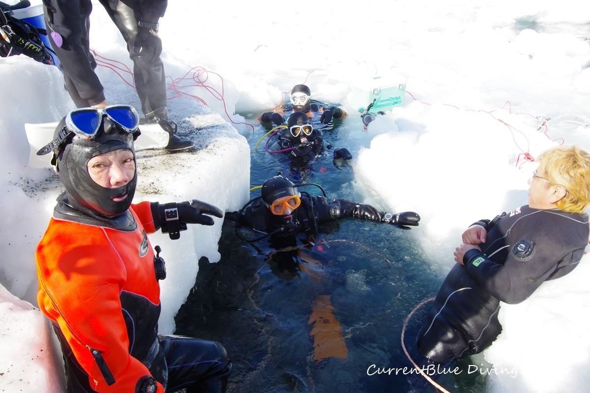 カレントブルー流氷ダイビングツアー (8)