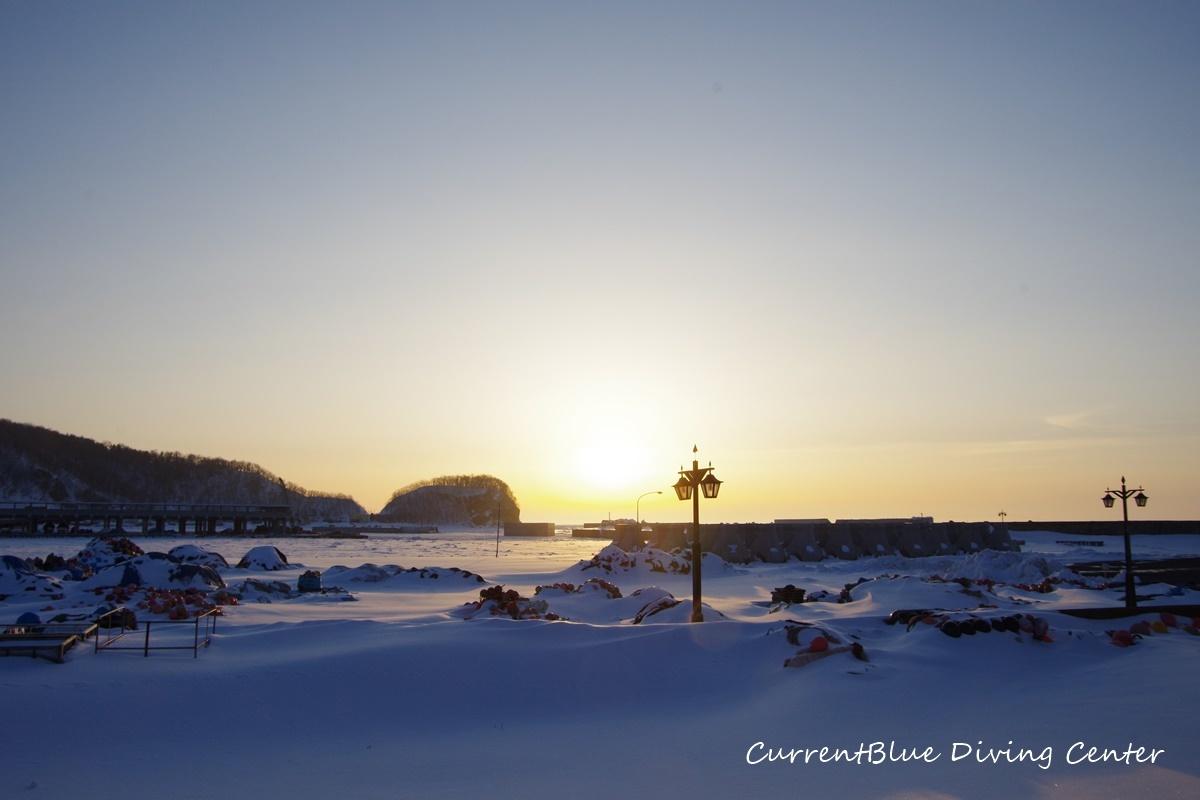 カレントブルー流氷ダイビングツアー (18)