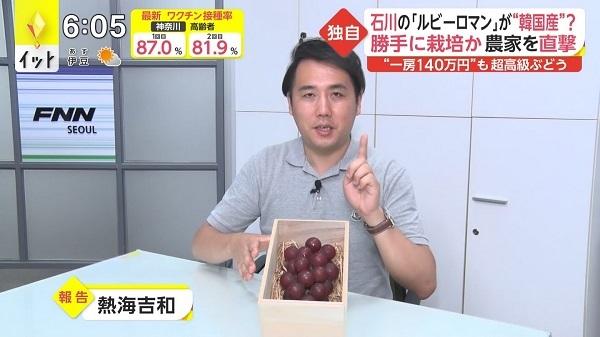 20210813日本の超高級ブドウが韓国で無断栽培!韓国「日本は先進国の立場で大目に見て!文句なら中国に言え」