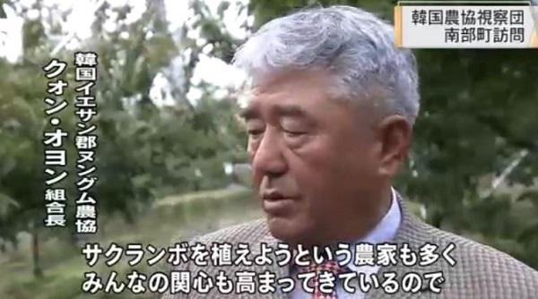 韓国団体がサクランボ園など視察!青森県南部町・板柳町のりんご農家も・イチゴなど苗が盗まれ大損害