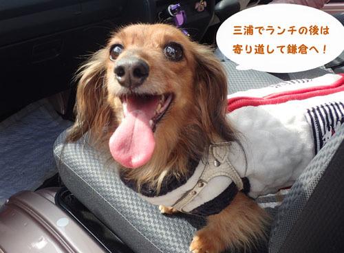 kamakuracafe1.jpg