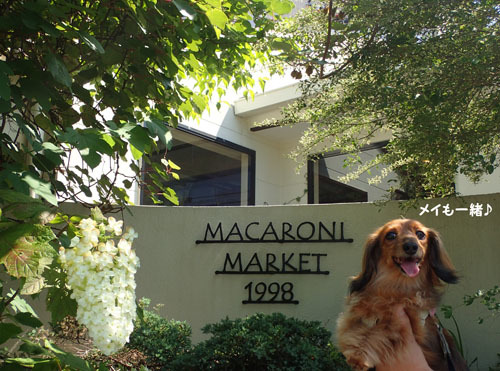 macaroni1.jpg