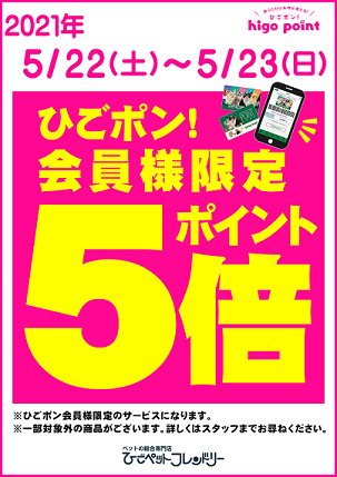 【ポスター】サービスデー(5倍)_20210522
