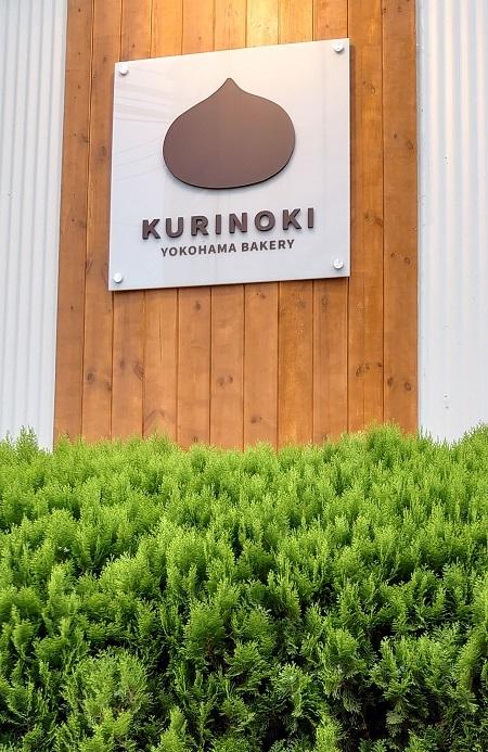 kurinoki016.jpg