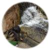 韓国,水聲洞渓谷