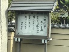 お寺の名言