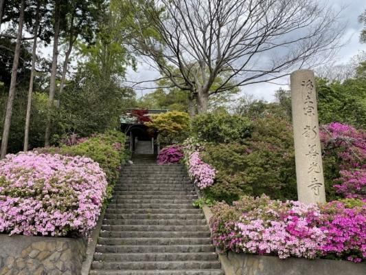 2021-4-16新善光寺 1