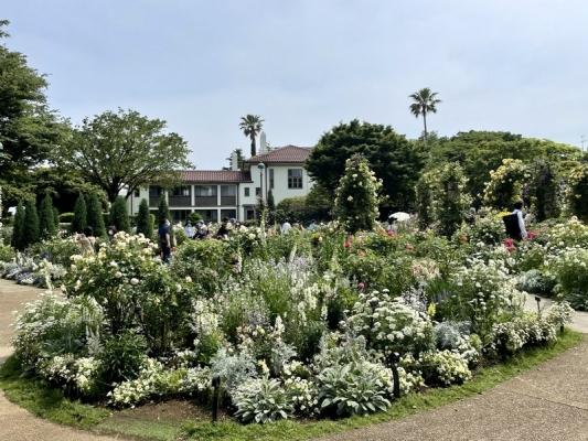 2021-5-14イングリッシュローズの庭 13