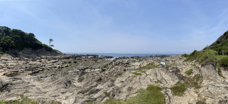 2021-6-8荒崎海岸 1