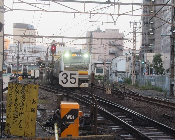 IMG_8806.jpg
