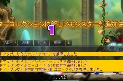 Maple_21564a.jpg