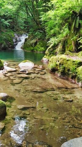 花貫渓谷の渓流