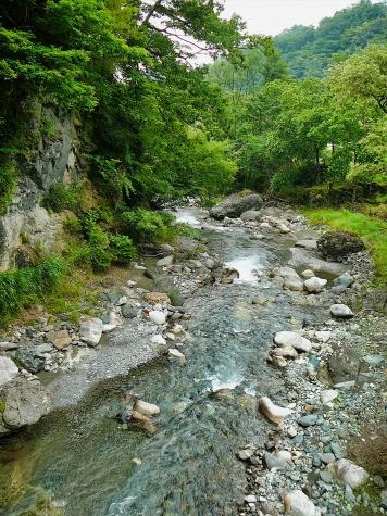 青木川の渓流【長野県大鹿村】