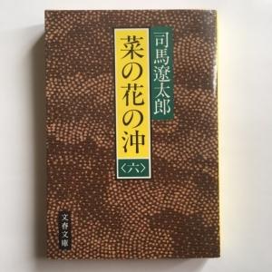菜の花の沖(六) 司馬遼太郎