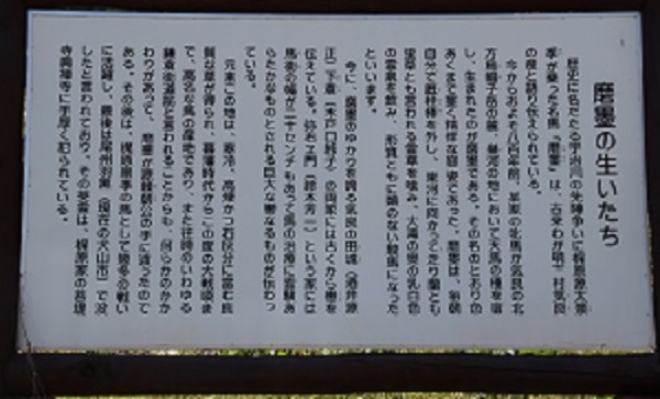 IMG_0913 (2)