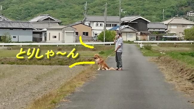 075田んぼ