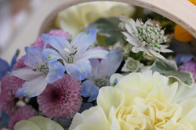 IMG_0146小花パープルブルー