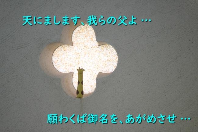 IMG_00430829.jpg