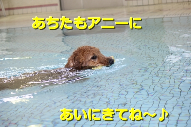 IMG_09791016.jpg