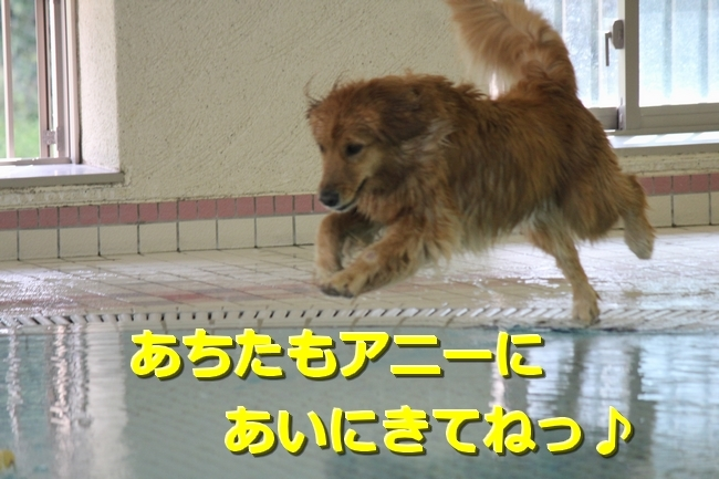 IMG_10851020.jpg