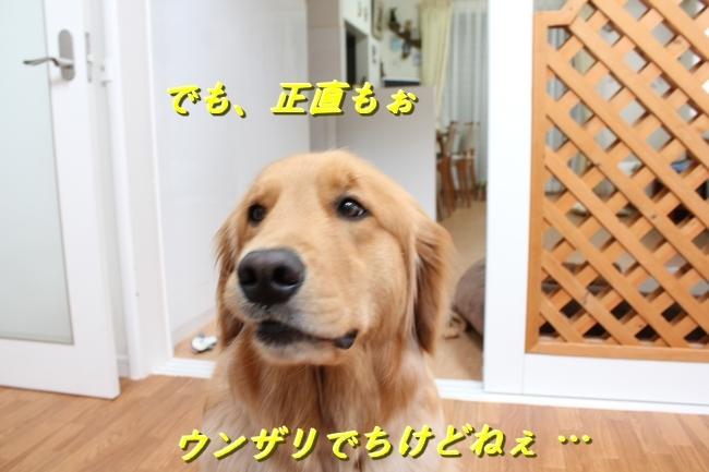 IMG_75140519.jpg