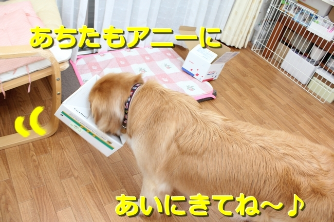 IMG_75620519.jpg