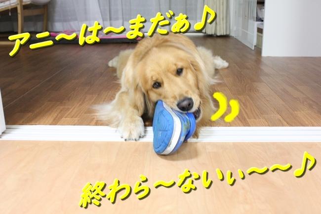 IMG_75720531.jpg