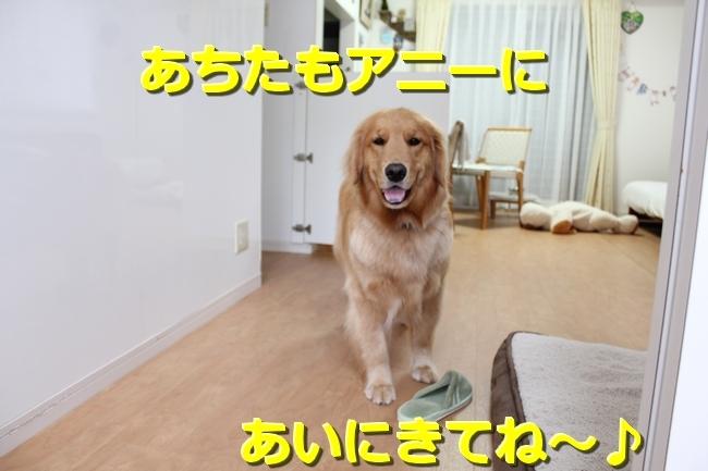 IMG_80020524.jpg