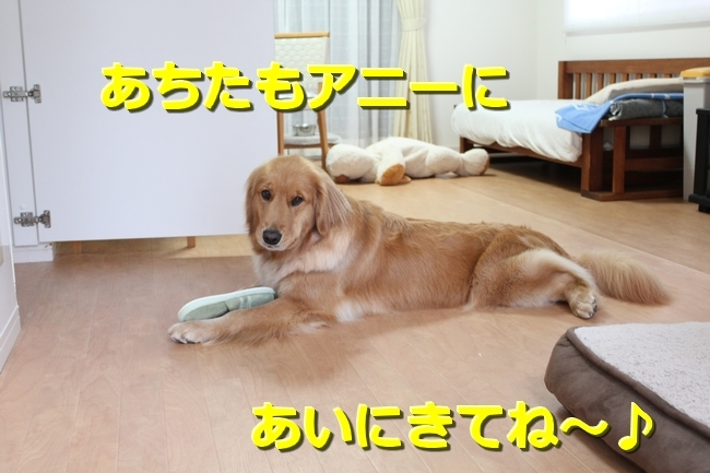 IMG_80050526.jpg