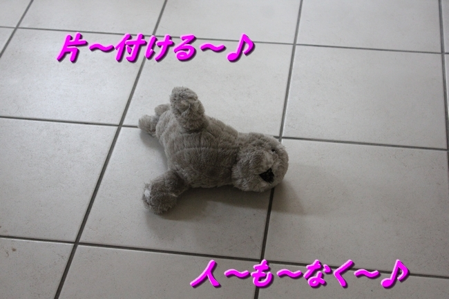 IMG_81130531.jpg