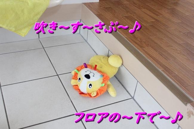 IMG_81140531.jpg