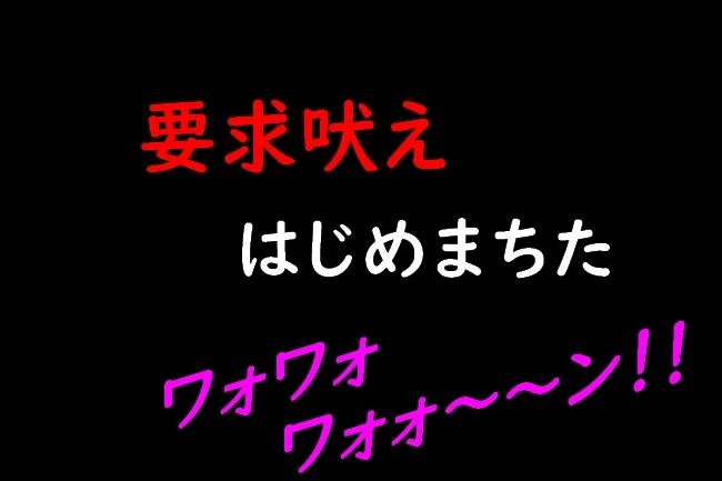 IMG_82270619.jpg