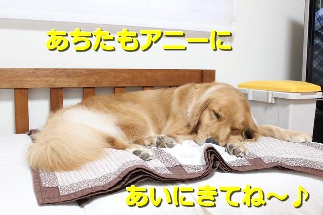 IMG_84210619.jpg