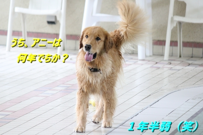 IMG_84900630.jpg