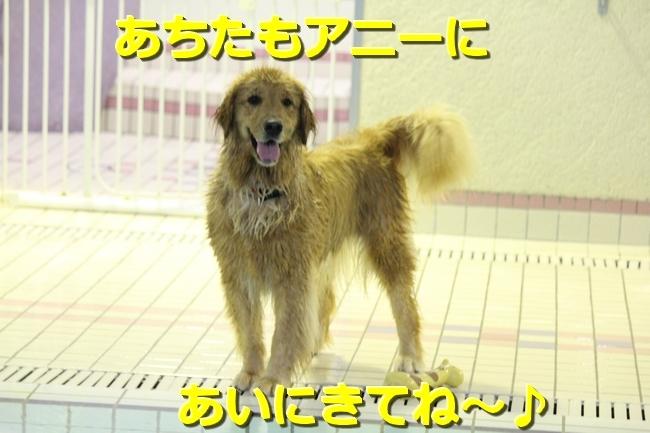 IMG_89020816.jpg