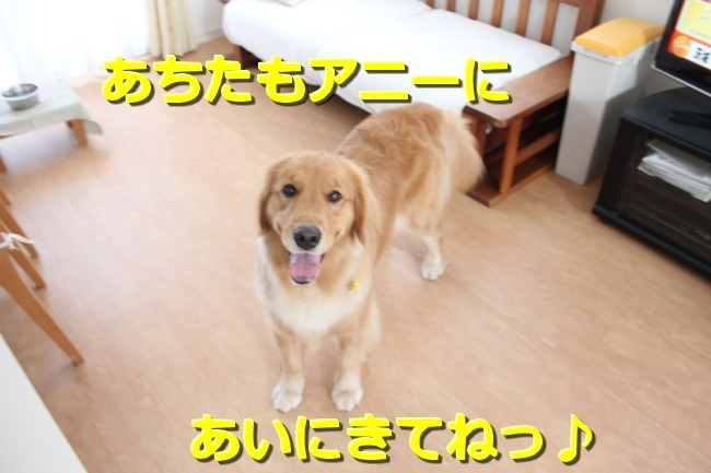 IMG_90800724.jpg