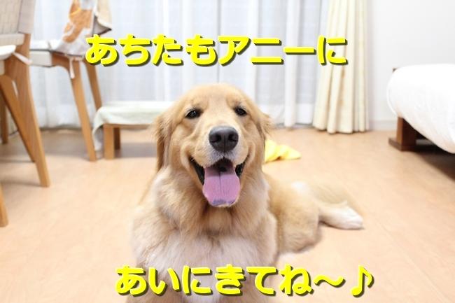 IMG_92570803.jpg