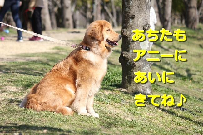 IMG_99280602.jpg