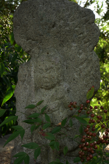P1020230_0-宝珠寺9